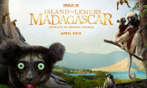 Островът на Лемурите:Мадагаскар | Island of Lemurs:Madagascar