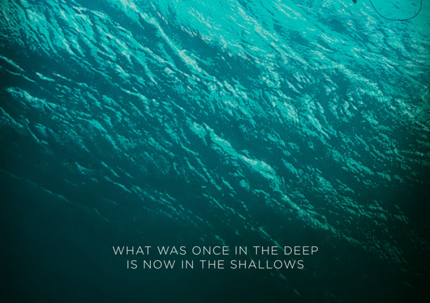 Опасни води | The shallows